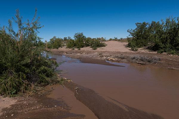 New Mexico Arroyo DASWCD